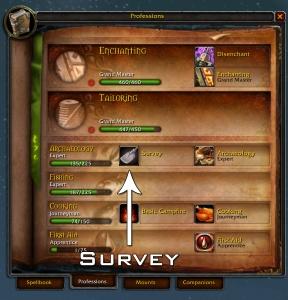 Survey Skill