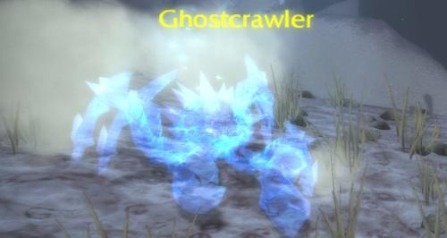 Ghostcrawler Crab