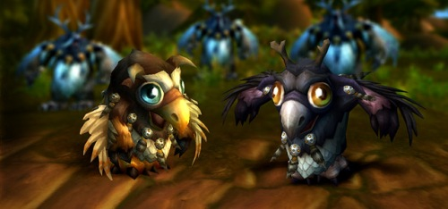 WoW Moonkin Hatchling